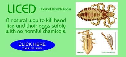 best head lice